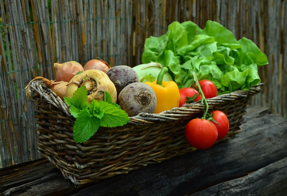 eating healthy fruits and vegetables is core to the mayo clinic diet