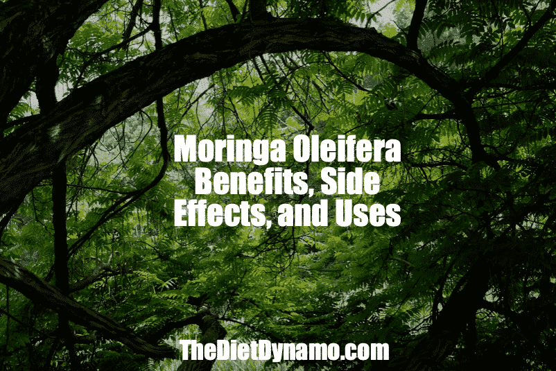 moringa side effects benefits and uses