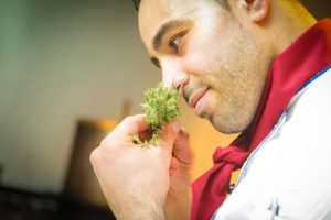 a chef smells ingredients for a new cabbage soup he wants to try