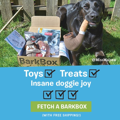 the best bark box deals