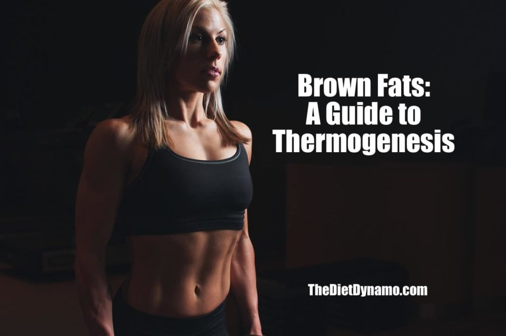 brown fat and thermogenesis guide