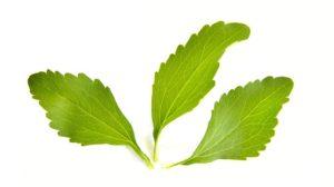 three stevia leaves