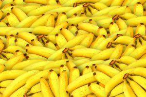 a whole bunch of bananas