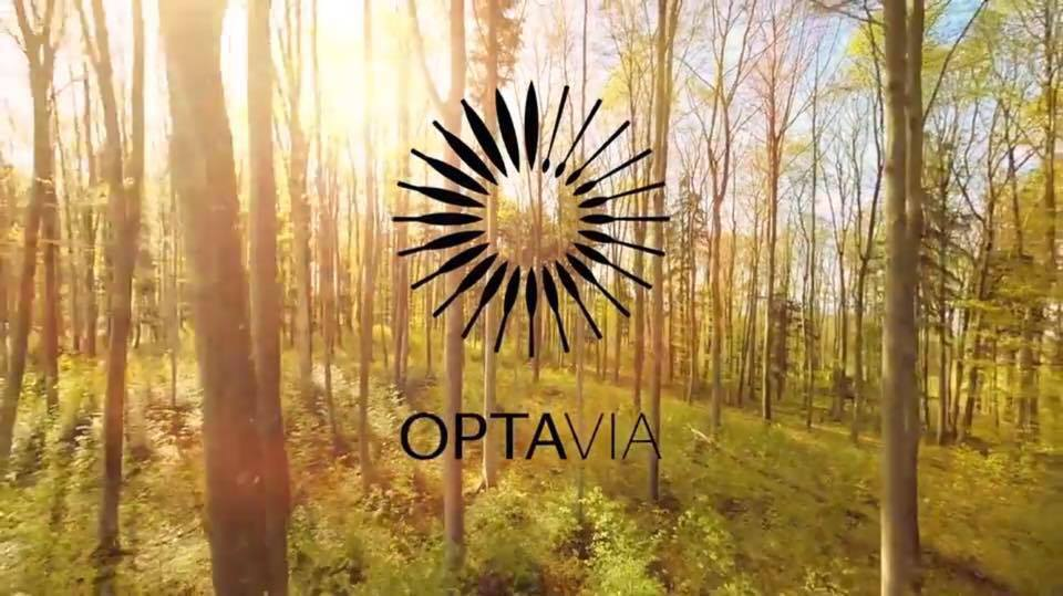 Optavia Review Pricing Does Their Coaching Work
