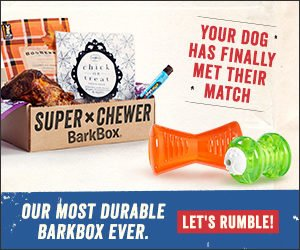 the super chewer barkbox