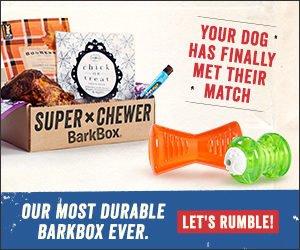 the super chewer barkbox