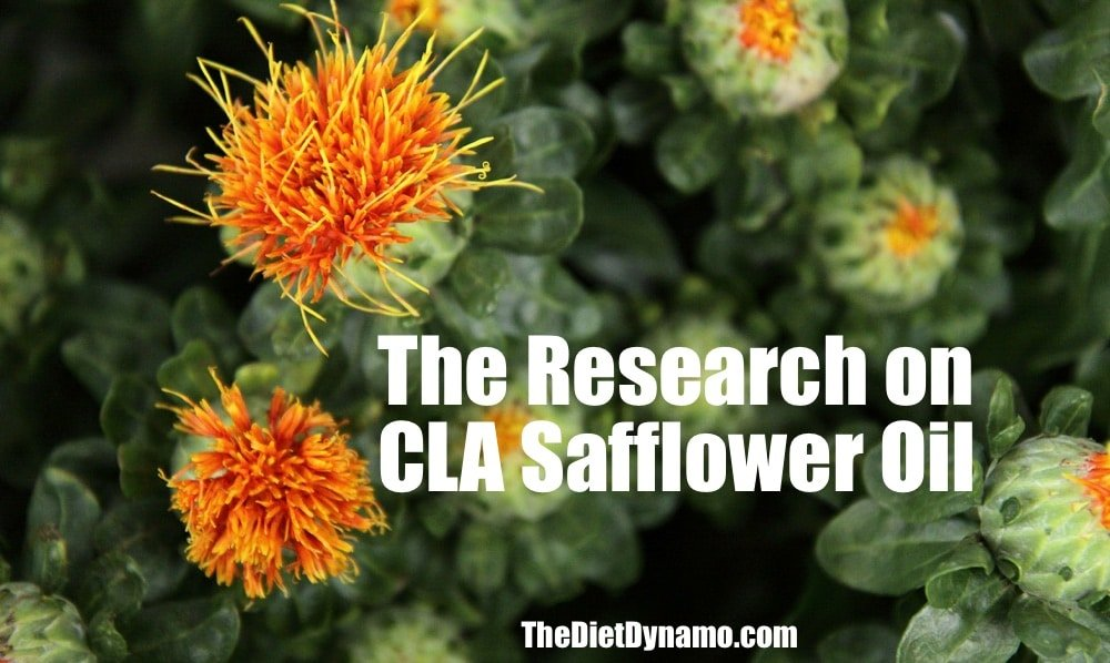 a safflower used for research