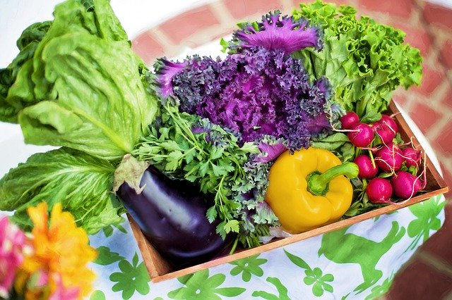green food list